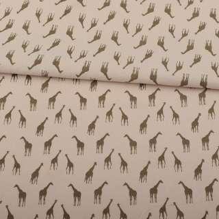 Коттон бежевый, коричневые жирафы, ш.150 оптом