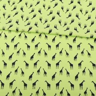 Коттон салатовий, чорні жирафи, ш.147 оптом