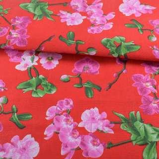 Деко-котон червоний, рожеві орхідеї, ш.150 оптом