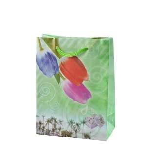 Пакет подарунковий 16х12х6 см з тюльпанами зелений оптом